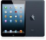 iPad mini Wi-fi 64 Go - Noir