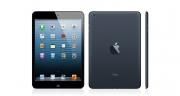 iPad mini Wi-fi + Cellular 16 Go - Noir